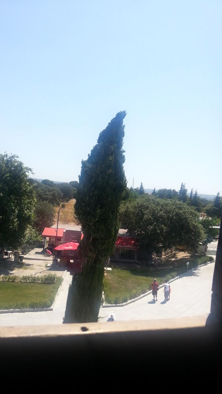 トルコのトロイ遺跡の木馬